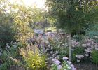 jardin-cistus-15