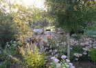 jardin-cistus-16