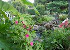 jardin et eau 2, le mas de la feuillade redim
