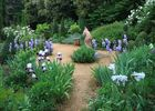 lesjardinsdecadiot jardintoscan baigneuse REDIM