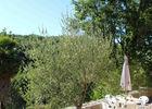 terrasse01-3