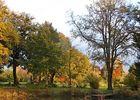 Arboretum5-sit.jpg_5