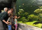 pescalis-aquarium©PWall-2000-pescalis (pw) 9831.jpg_4