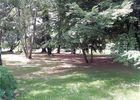 cirieres-chambres-dhotes-domaine-de-la-lorien-parc.jpg_11