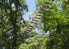 La Forêt des Ecureuils