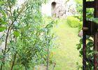 Moncontour - Jardin d'Hildegarde