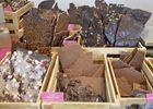 Les chocolats de Mélinda - plozevet-© M Hamel 1