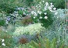 Parc Botanique de Cornouaille Combrit Pays Bigouden Sud (2)