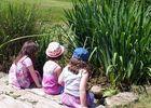 Parc Raphalen - Ploneour-Lanvern-Pays Bigouden-2