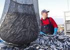Penmarc'h OCEANE ALIMENTAIRE conserverie pays bigouden finistère bretagne (3)