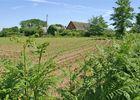VAN DORSSEN  - Iris - Plomeur -Pays Bigouden - 8