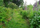 jardin-permaculture-bretagne-la-pature-es-chenes-2-2