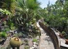 OTI Caroux_Roquebrun_jardin_mediterraneen (1)