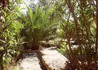 Beziers-jardin-cote-nord-1