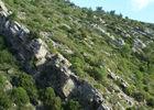 Défilé Mont Plo K.Sulter 2