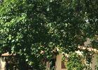 Les jardins, Domaine de Peilhan