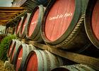 Les vignerons de Sérignan-Sérignan_13