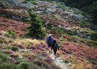 Randonnée sur le plateau du Caroux©G.Souche PHLV