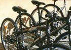 Vélogénie Vélos