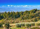 L'environnement avec vue sur les pyrénées enneigées