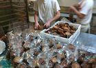 Biscuiterie la Maison Guella