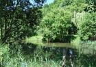 Camping-Le-Villeu-Lancieux-nature