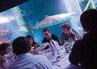 Dîner - Location Salle - Grand Aquarium - Saint-Malo