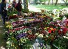 Les floreales 2 ©E.Riou