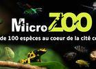 Visuel-MicroZoo