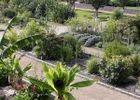 jardinbotaniquedeyvesrocher-150x150[1]
