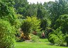 Les Jardins de Brocéliande