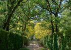 Chateau_et_Labyrinthe-de-Merville-credit-Labyrinthe_de_Merville (56)