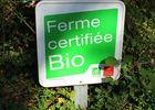 Ferme_aux_chochons-bio-credit-OTHautsTolosans (7)