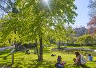 Jardin royal(1) © D.Viet