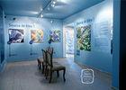 museum du pastel5©Terre de pastel