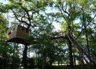 merville_canopys treat TIS