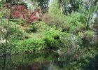 jardin compans 6 TOULOUSE