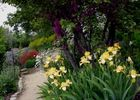 jardin des senteur fleurs avril mai RAMONVILLE © Rando-plaisirs