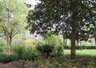 jardin royal 2 TOULOUSE