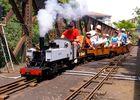 le_petit_train_de_grenade-Credit-Petit-Train_Grenade (1)