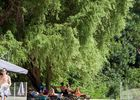 piscine camping du moulin MARTRES