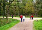 promenade_foret_bouconne-famille-printemps-retouche