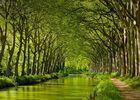 Tayrona-Chartreuse du Canal