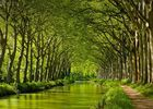 Katios-Chartreuse du Canal