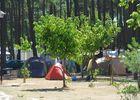 Camping Les Oyats