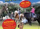 poneys-do-village