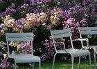 Automne au Parc Floral_2014 (1)