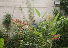 Parc Floral 17