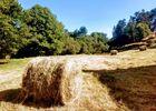 17-Aire naturelle Moulin de Lacombe