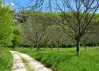Bourgnou - Noyers sur le causse_10 © Lot Tourisme - C. Sanchez